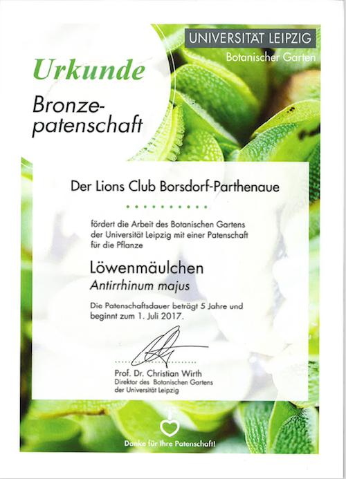 Urkunde Broncepatenschaft